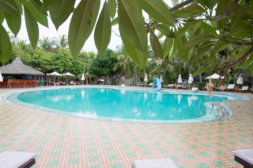 запах скошенной вьетнам фантьет отель пальмира фото отзывы расцветка позволяет